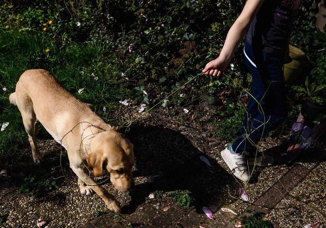 online-opleiding-fotografie-Mastery-Day-in-the-Life-documentaire-fotografie-Het-echte-leven-fotograferen-hond-aan-lijn-SSF_5998_wm